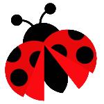 large_ladybug